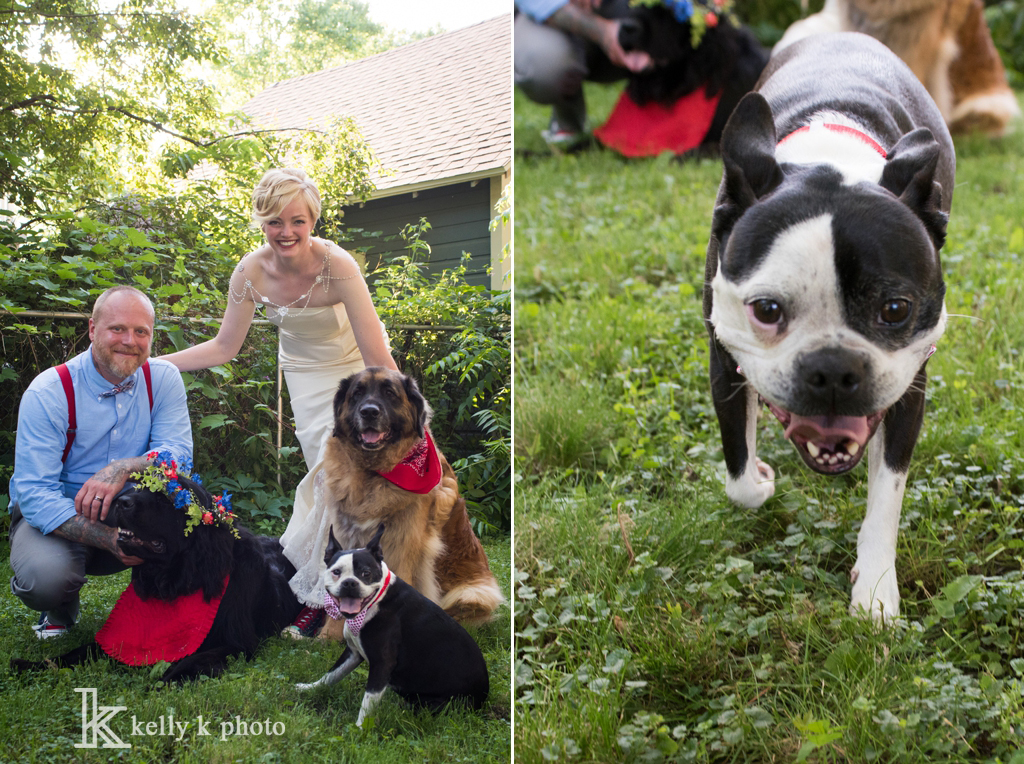 14_DogsInWedding